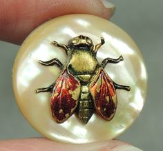 Picture Button Brass Fly on MOP Metal | eBay, $32.99