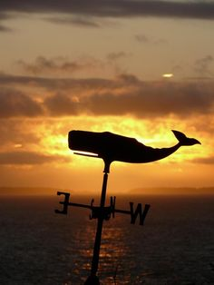 Nantucket Whale Weather vane