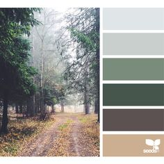 design seeds | search | for all who ♥ color ❤ liked on Polyvore featuring backgrounds, colors, design seeds, color inspiration and colour