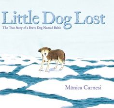 Pin and Win! Little Dog Lost on #WeGiveBooks
