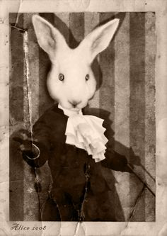 If I didn't know rabbit people were dangerous, I could love this guy.   Portrait of An Victorian Rabbit by a-lice