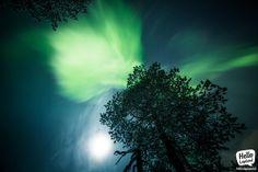 Aurora Borealis 14.12.2013 in Rovaniemi Lapland Finland.