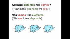 European Portuguese - Lesson 13 - Animals and verb To See - Animais e ve...