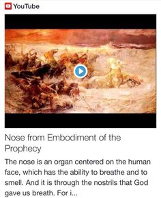 Nose from Embodiment of the Prophecy http://www.andrewtheprophet.com/11301/260320.html