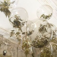 Gold fern balloons with @earlyhoursltd simple elegance #weddinginspo…