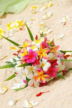 Have a lovely day .:*・゜♡゜・*:.ღ .:*・゜ #lovely  #flower