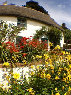 Cadgwith Cottage and Gardens, Cornwall