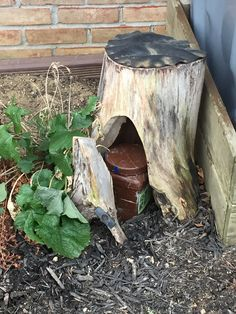 A nicely hidden geocache somewhere in Pennsylvania.  The hider did a good job hollowing out the stump.