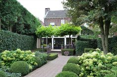 Beautiful town house with city garden Colostrum near the center of Weert Garden On A Hill, Love Garden, Hydrangea Landscaping, Front Yard Landscaping, Small Gardens, Outdoor Gardens, Front Yard Planters, Up House, Town House