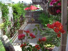 Backyard Bocce Court: One side of this small backyard was transformed into a bougainvillea-ringed bocce court. From HGTV.com's Garden Galleries