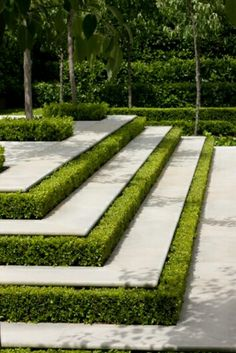 Make you steps stand out by adding a neat and stylish boxwood border