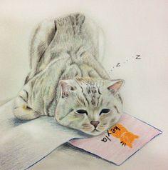 好想懶惰啊~ #art #illustration #color #painting #cat