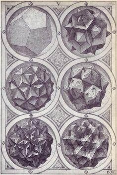 Aqua (a) - Perspectiva Corporum Regularium - Wenzel Jamnitzer 1568 / Sacred Geometry Geometry Art, Sacred Geometry, Solid Geometry, Mathematics Geometry, Tattoo Geometrique, Instruções Origami, Platonic Solid, Psy Art, Modelos 3d