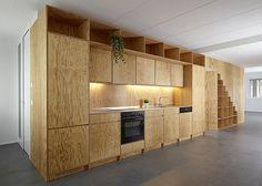 eclépens apt | cabinetry ~ big-game