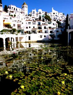 Marbella, in Malaga, Spain - Brought my family here...absolutely amazing!
