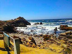 Pacific Grove, California's rugged and beautiful seaside coastline views