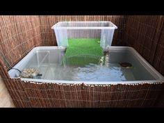 Estanque tortuguera en la terraza 2 - YouTube Aquatic Turtle Tank, Turtle Aquarium, Aquatic Turtles, Turtle Tank Setup, Turtle Dock, Turtle Care, Pet Turtle, Tartaruga Aquatica, Turtle Basking Platform