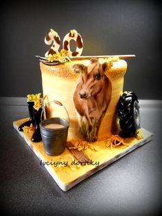 ZD by Ivciny dortiky Cow Birthday Cake, 14th Birthday Cakes, Cake Design For Men, Cool Cake Designs, Cow Cakes, Cupcake Cakes, Cake Decorating Amazing, Western Cakes, 21st Cake