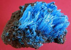 Chalcanthite. Planet Mine, La Paz, Arizona, USA Taille=28 x45 x 55 mm Copyright Christiane David
