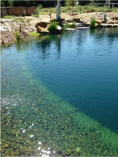Check out these photos of a stunning new Natural Swimming Pool/Pond (NSP) in Texas! This NSP was built using our How-To eBook, Natural Swimming Pools/Ponds: The Total Guide, Edition , and a. Swimming Pool Pond, Natural Swimming Ponds, Swimming Pool Landscaping, Swiming Pool, Natural Pond, Swimming Pool Designs, Pool Landscape Design, Pond Design, Garden Design