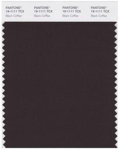 Pantone Smart 19-1111 TCX Color Swatch Card   Black Coffee   Magazine Cafe Store NYC USA