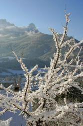 Raquette et ski de fond à Barcelonnette Alpes du Sud