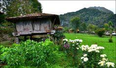 Hórreo Caño - Cangas de Onís,  Asturias