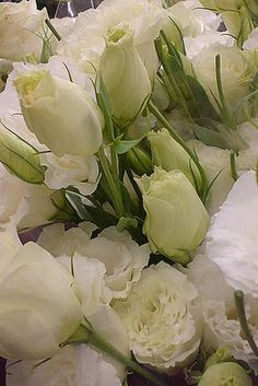 Gorgeous white Lisianthus My favourite White Wedding Flowers, Fresh Flowers, White Flowers, Beautiful Flowers, Lisianthus Flowers, Ranunculus, Flower Garden Plans, Flower Pots, Just In Case