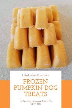 Easy frozen peanut butter and pumpkin dog treats. Pumpkin Dog Treats, Doggie Treats, Easy Treats To Make, Dog Ice Cream, Frozen Dog Treats, Frozen Pumpkin, Plain Greek Yogurt, Dog Treat Recipes, 3 Ingredients