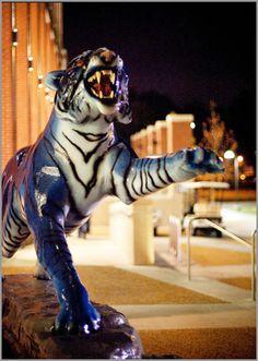 Alumni Association :: Memphis Matters January 2011 :: University of Memphis