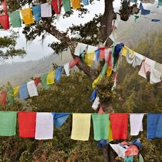 Its been ranked one of the happiest countries in the world. In Bhutan you'll see fluttering prayer flags like these. Free Things, Things To Do, Most Beautiful, Beautiful Places, Travel General, Tree Shop, Prayer Flags, Bhutan, Grand Tour