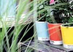 Verbindet Garteln mit Grafik: Pantonetöpfe #gardening