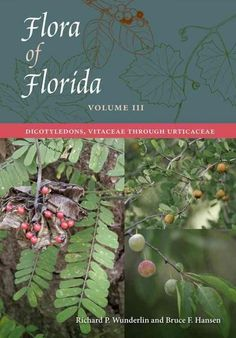 Flora of Florida: Dicotyledons, Vitaceae Through Urticaceae