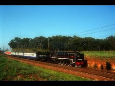 South African Steam: 3094 to Cullinan and Nylstroom Oct 1998 South African Railways, Steam Locomotive, Trains, Around The Worlds, Christian, Youtube, Christians, Youtubers, Train