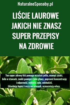 Natural Remedies, Plant Leaves, Herbs, Health, Food, Turmeric, Health Care, Essen, Herb