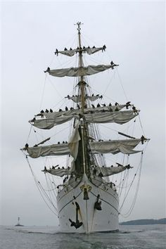 """The """"Gorch Fock"""" as its sails are being furled."""