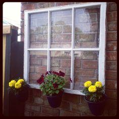 Patio decor. Upcycled window. Plants- Love this idea!