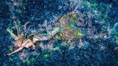 Mermaid in plastic: Artist Benjamin Von Wong highlights ocean pollution.