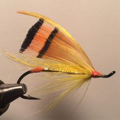 Haig-Browns Golden Girl #fishing #flyfishing #flytying #fluefiske #fluebinding #steelhead #salmon