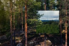 Planning a vacation anytime soon? Would you sleep in a tree house? What if I tell you that this is one of the coolest tree houses ever? Located in Sweden this hotel room is camouflaged into the sur… Cubes, Luxury Tree Houses, Tiny House, Patio Grande, Treehouse Hotel, Treehouse Ideas, Futuristisches Design, Tree House Designs, Unique Hotels
