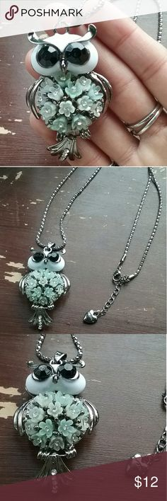 Owl silvertone necklace NWOT Silverstone owl Pendant charm necklace New without tags. Really cute and sparkly! The chain Is about 27 inches long and the owl pendant charm is about 2 1/2 inches long. The chain is light but the charm is heavy. The chain is stamped BJ. Please take a look at my closet to bundle and save. Offers are welcome!!! Jewelry Necklaces