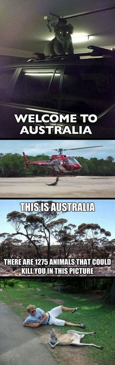 Things are a little different in Australia…