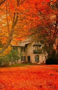 Linwood House at the Norman Rockwell Museum, Stockbridge, Massachusetts. My favorite artist and my favorite season - I have to visit this place! Norman Rockwell, Beautiful Places, Beautiful Pictures, Pretty Images, Amazing Photos, Autumn Scenes, Seasons Of The Year, Fall Pictures, Belle Photo