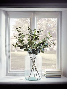Grote transparante vaas in vensterbank - Vases Decor, Plant Decor, Grand Vase Transparent, Deco Jungle, Deco Champetre, Photo Deco, Deco Floral, Home And Living, Home Remodeling