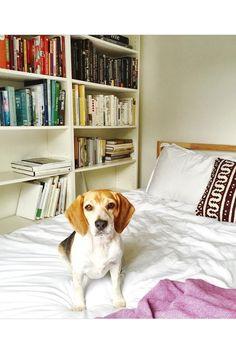Meghan Markle's Chic Toronto Home | Interiors (houseandgarden.co.uk)