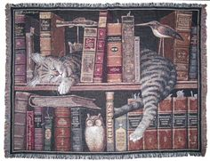 Google Image Result for https://www.animalgiftideas.com/s2g/vallecsalama/LibraryCatThrow.jpg