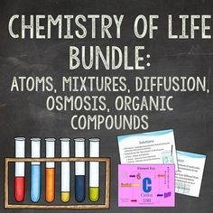 This bundle is a perfect introduction to any life science class! Save 25% over purchasing these items separately!