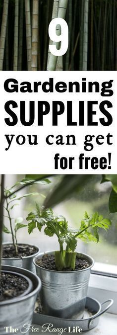 9 Gardening Supplies You Can Get for Free! No more excuses, gardening doesn't have to be expensive. Just grow it!
