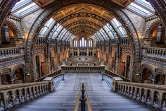 Shot of Hintze Hall at the Natural History Museum in London, UK.  Editing in Camera RAW, NIK Viveza and NIK Color Efex Pro.  Have been keen to photo this place since I saw Otto Berkeley's great shot in this place.  Hope you like it.