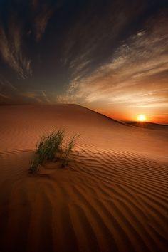 Desert Sunset....